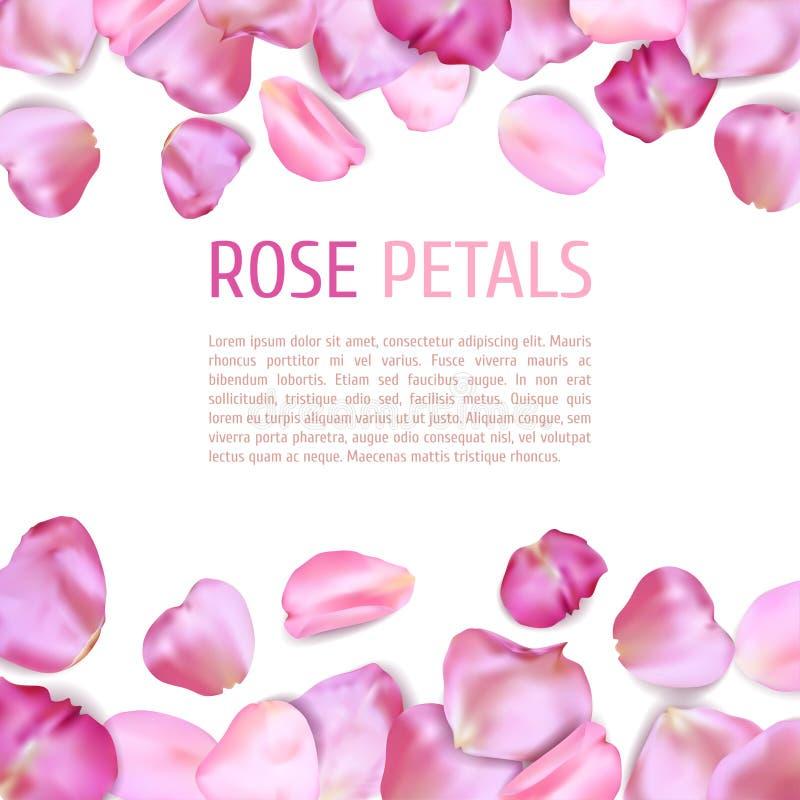 Frontera rosada de los pétalos de Rose stock de ilustración