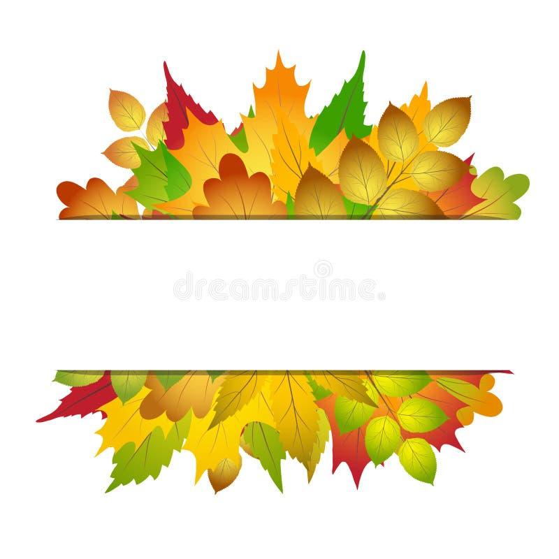 Frontera vacía del marco con la colección colorida brillante de las hojas de otoño en el ejemplo blanco, común del vector ilustración del vector
