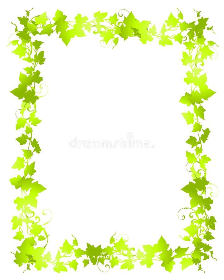 Fronteras verdes del marco de la hoja de la vid libre illustration