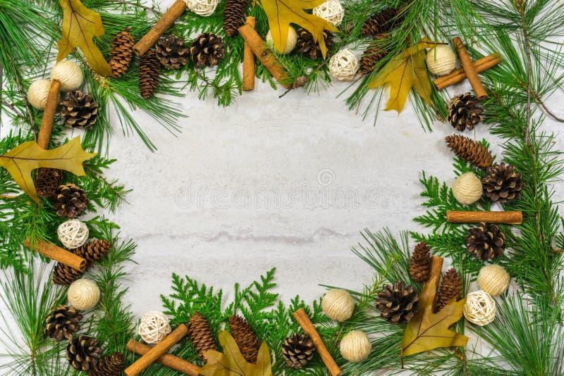 Frontière à feuilles persistantes avec des cônes de pin, des bâtons de cannelle, et le congé de chêne photographie stock libre de droits