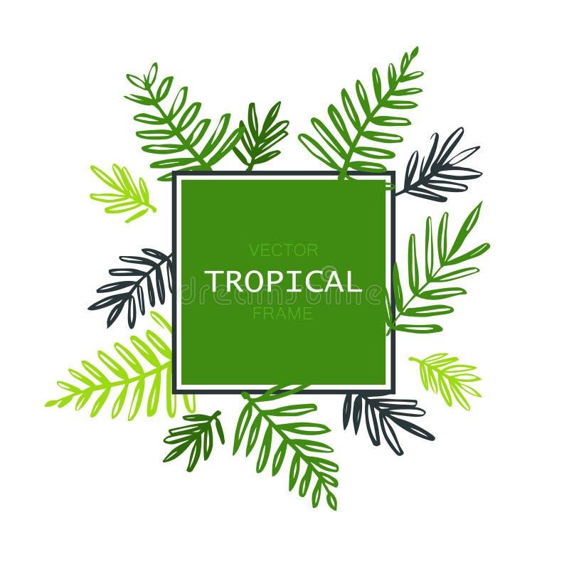 Frontière abstraite tropicale de vecteur avec des palmettes Feuillage exotique d'arbre fait dans le style de brosse avec l'endroi illustration de vecteur