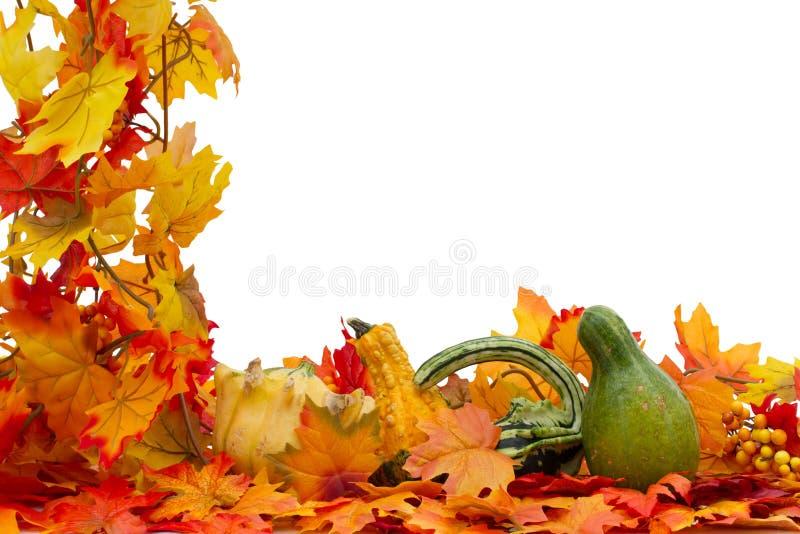 Frontière colorée d'automne photo stock
