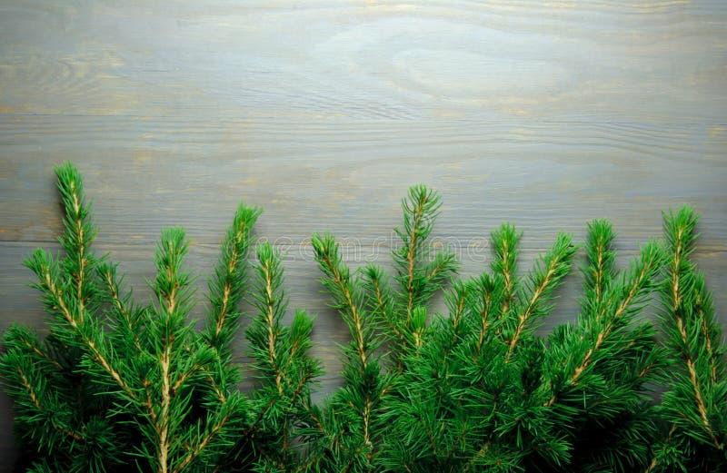 Frontière d'arbre de Noël images stock