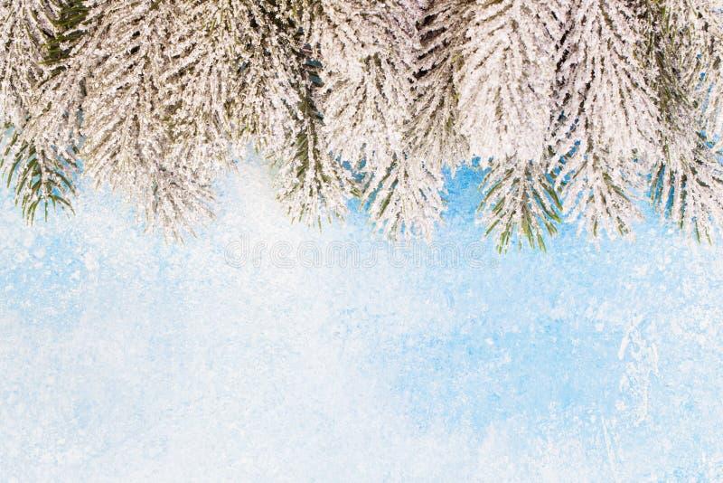 Frontière de Noël Branches vertes de sapin enneigé sur fond bleu de texture gelée avec espace de copie image libre de droits