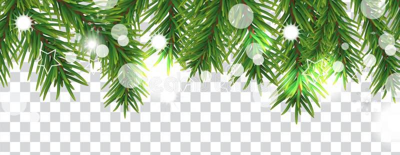 Frontière de Noël et de bonne année des branches d'arbre de Noël sur le fond transparent Décoration de vacances Vecteur illustration de vecteur