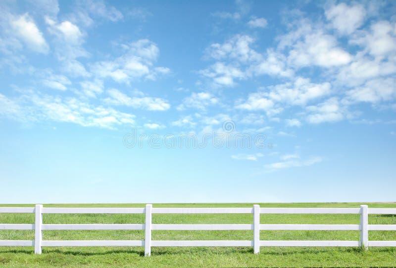 Frontière de sécurité blanche sur l'herbe verte photo libre de droits