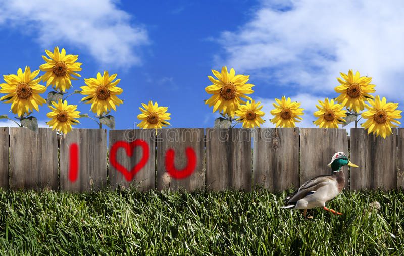 Frontière de sécurité de graffiti de Valentine photos libres de droits