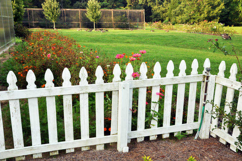 Frontière de sécurité de jardin photos stock