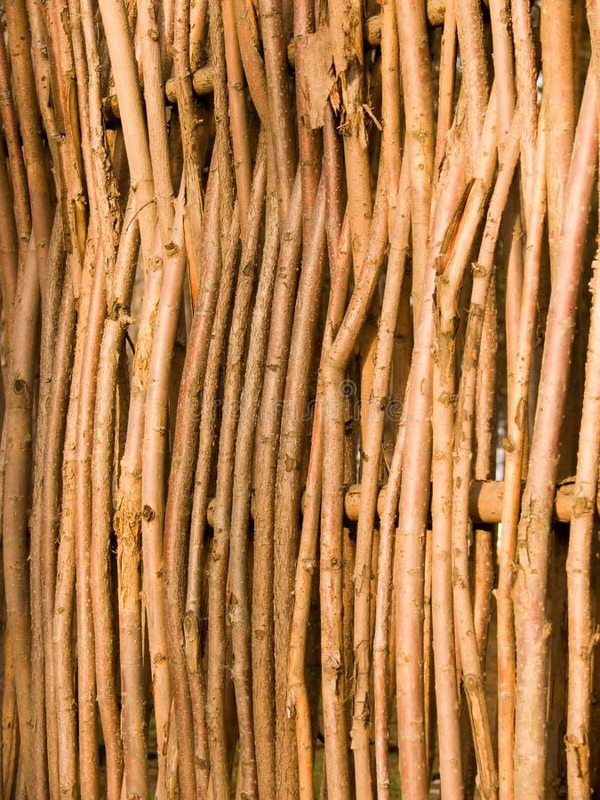 Frontière de sécurité des branchements d'arbre photographie stock