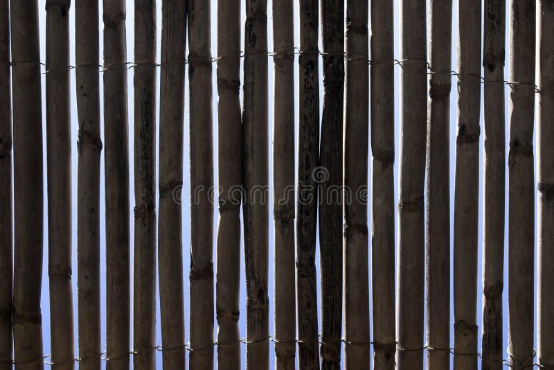 Frontière de sécurité en bambou photo stock