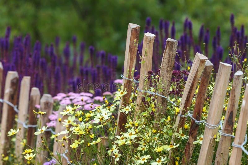 Frontière de sécurité en bois de châtaigne au printemps images stock