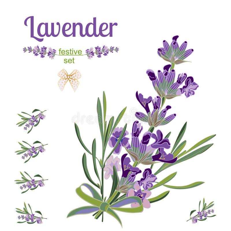 Frontière et éléments de fête réglés avec des fleurs de lavande pour la carte de voeux Illustration botanique illustration libre de droits