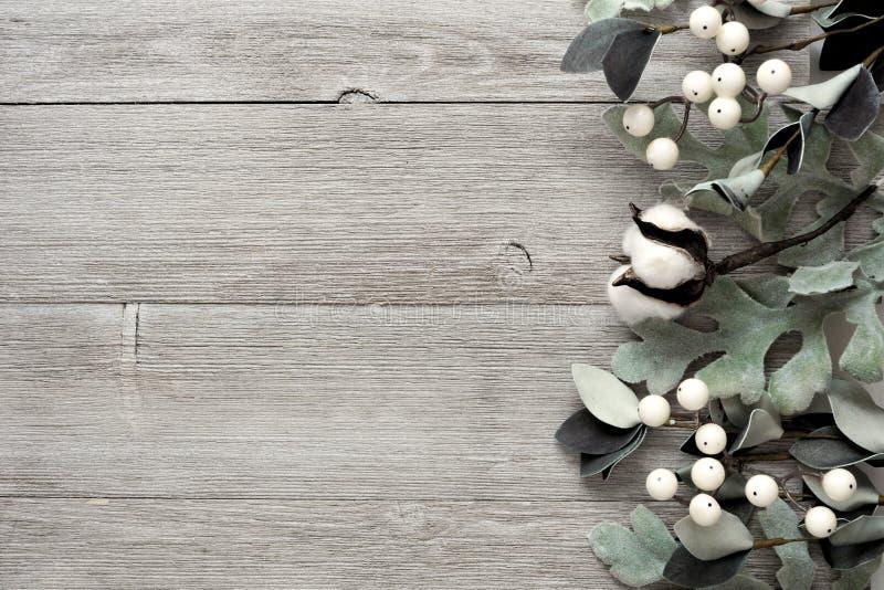 Frontière latérale des feuilles argentées de vert et des baies blanches au-dessus du bois gris image stock