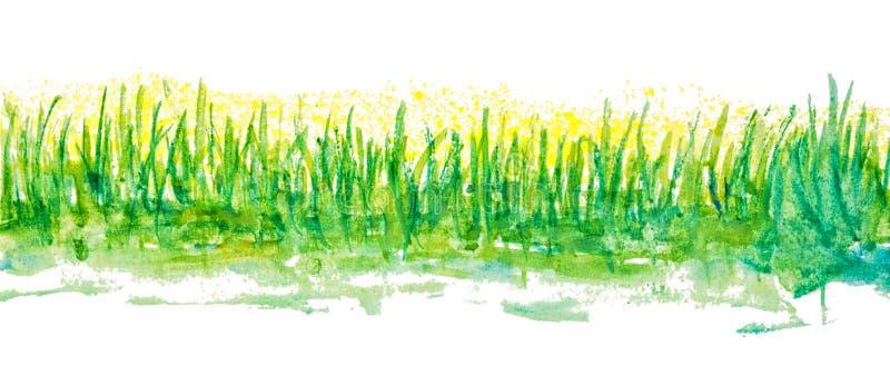 Frontière linéaire d'herbe d'aquarelle illustration stock