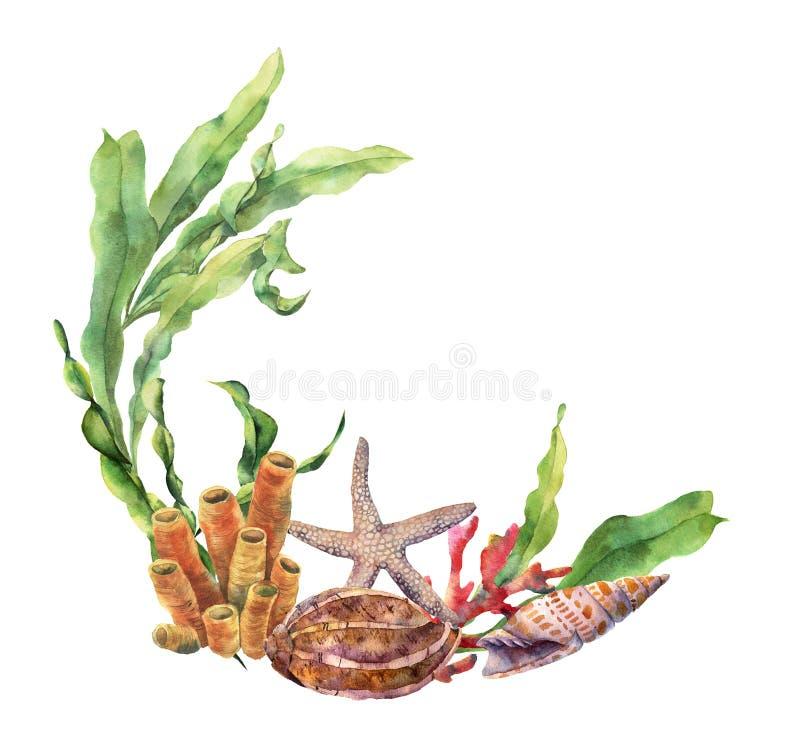 Frontière nautique d'aquarelle avec le récif coralien Illustration sous-marine peinte à la main avec la branche de laminaria, éto illustration stock