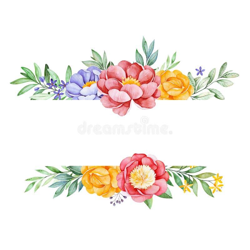 Frontière romantique de cadre d'aquarelle avec la pivoine, la rose, les feuilles, les fleurs, les branches et les baies illustration de vecteur