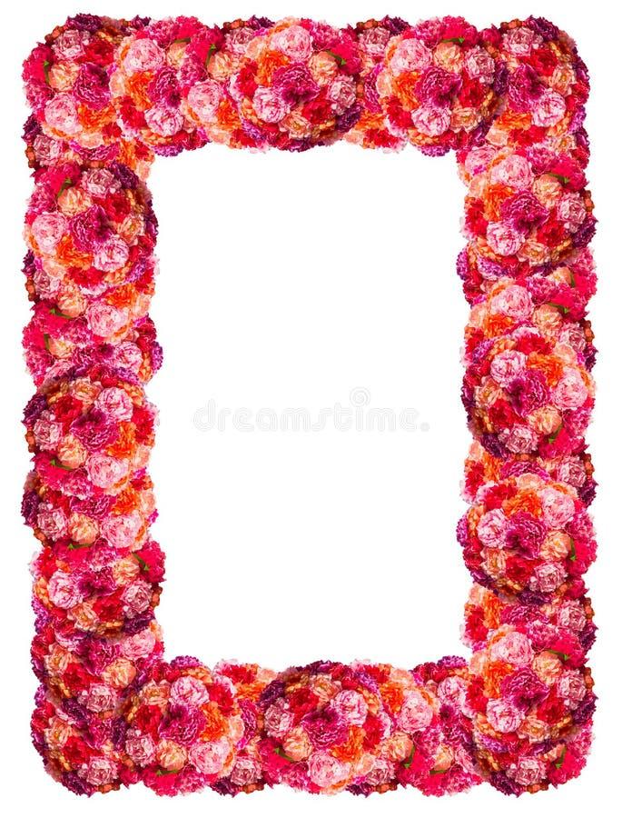 Frontière rose fraîche de cadre de roses d'isolement image stock