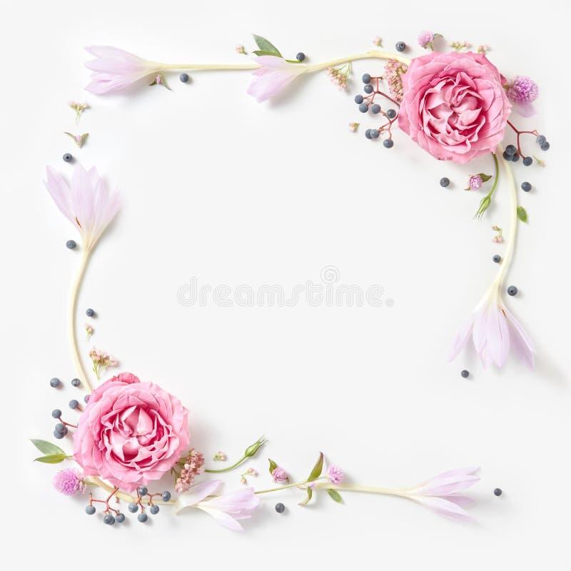 Frontière rose fraîche de cadre de roses d'isolement photos libres de droits