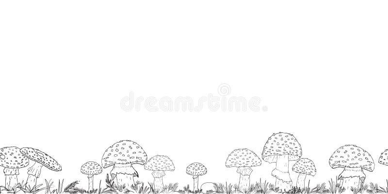 Frontière sans couture avec les champignons tirés par la main sur le fond transparent photo libre de droits
