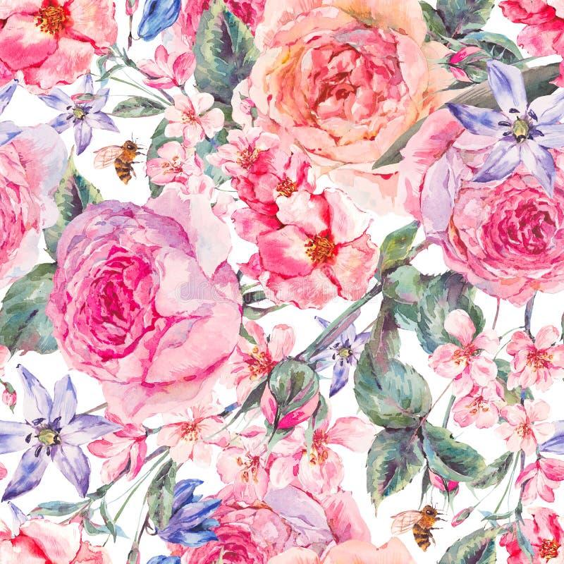 Frontière sans couture de ressort d'aquarelle avec les roses anglaises illustration libre de droits
