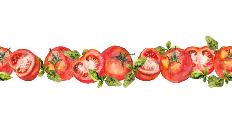 Frontière sans couture horizontale de rayure avec les légumes de tomate et le basilic vert illustration stock