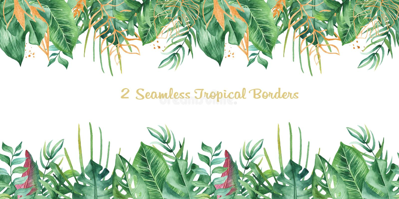 Frontière tropicale sans couture d'aquarelle illustration de vecteur