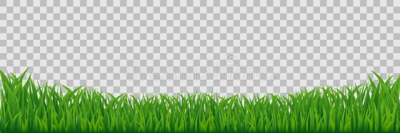 Frontière verte d'herbe de pré d'isolement sur le fond transparent illustration stock