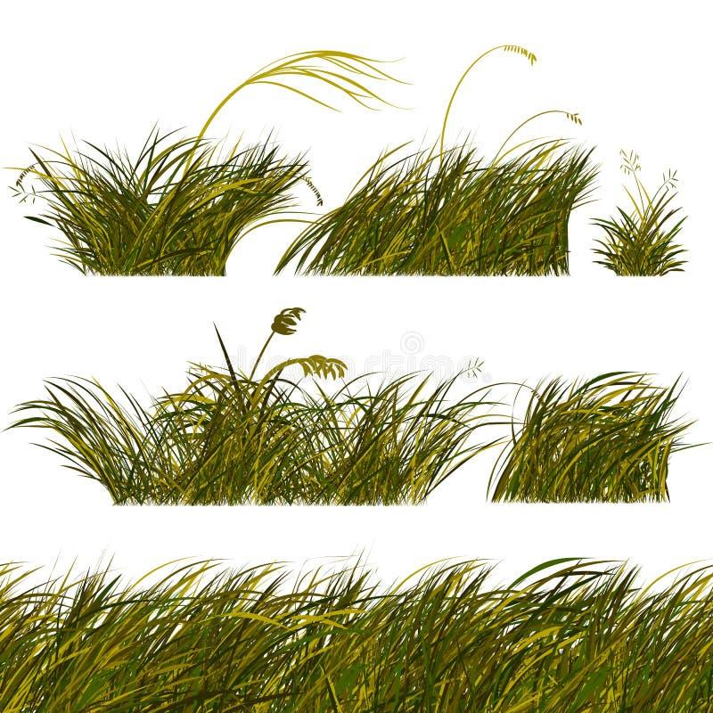 Frontières vertes d'herbe de steppe réglées illustration de vecteur