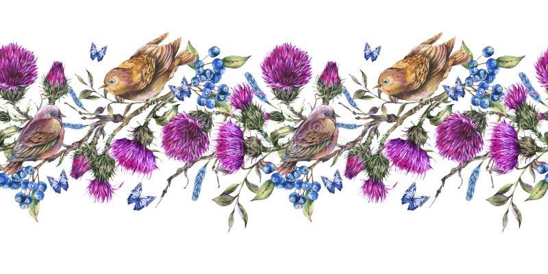 Fronti?re seqamless d'aquarelle avec des paires d'oiseaux sur une branche, chardon, baies illustration de vecteur