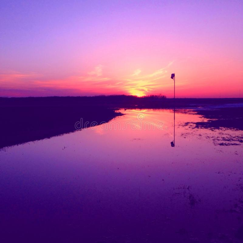 Frontowego jarda słońca set fotografia royalty free