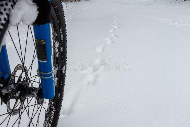 Frontowi koła rower górski zostają w śniegu i podążają ścieżkę Śnieżni płatki unosi się na ciemnych dróg oponach Zima my zdjęcia stock