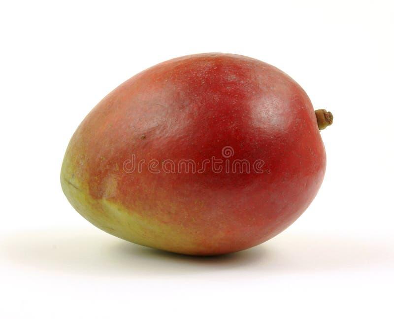 frontowy lewy mango obraz royalty free