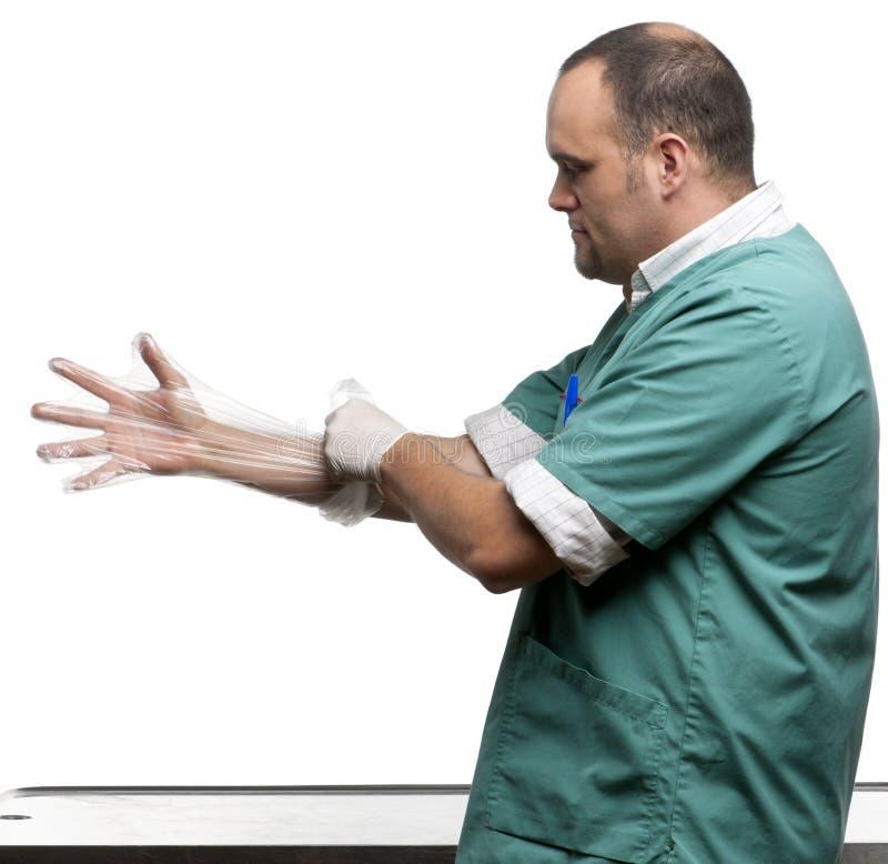 frontowy rękawiczkowy plastikowy kładzenia weterynarza biel zdjęcie stock