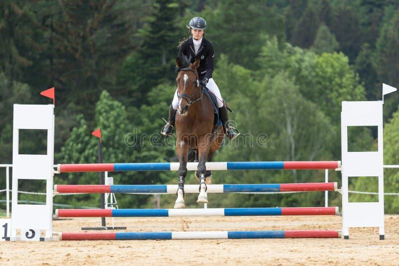 Frontowy widok piękny młody horsewoman doskakiwanie fotografia royalty free