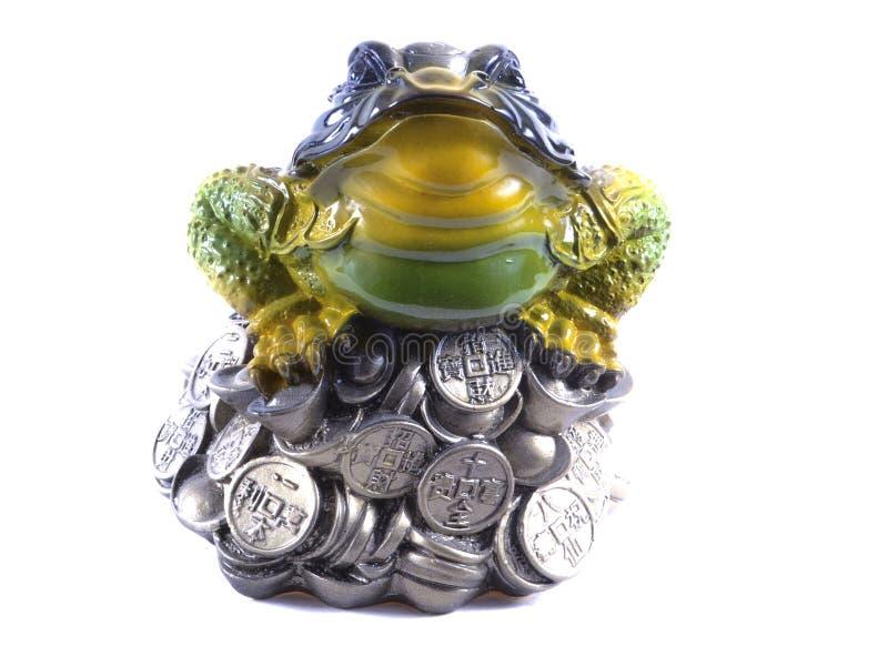 Frosch stockbilder