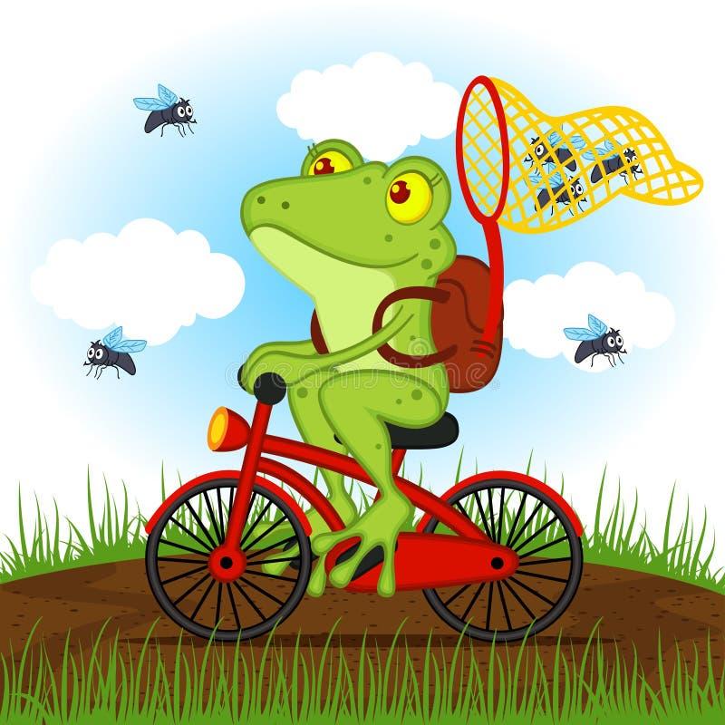 Frosch auf einem Fahrrad fängt Fliegen vektor abbildung