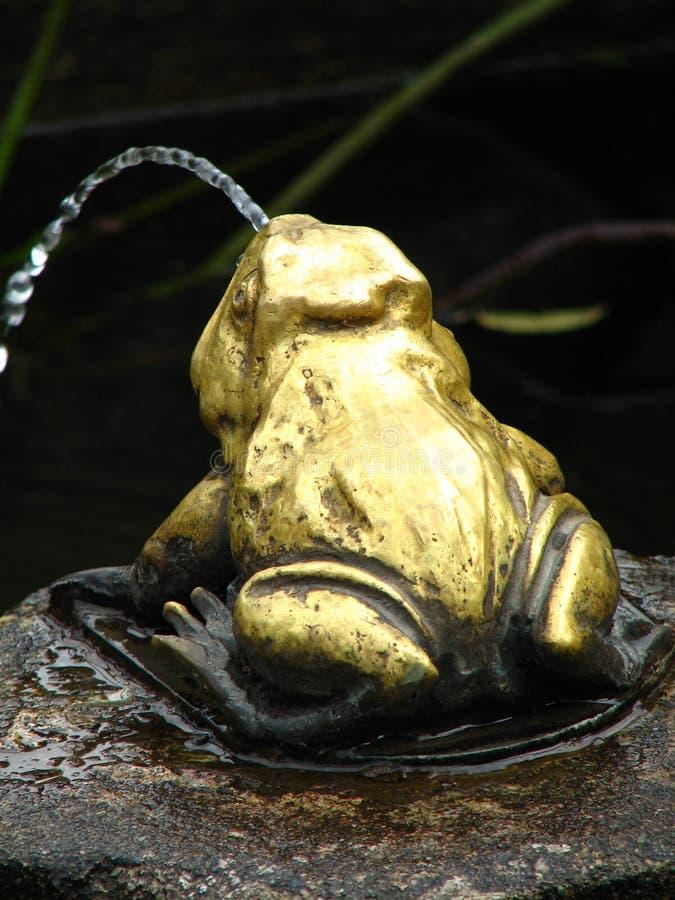 Froschbrunnen in einem Gartenteich lizenzfreie stockfotografie