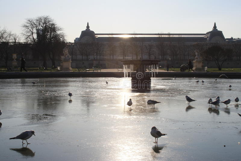 Frosen fontanna obraz royalty free