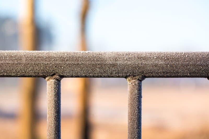 Frost на стробе стоковое фото rf
