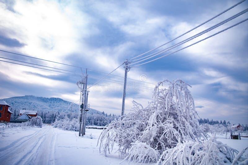 Frost на электрических проводах стоковые изображения rf