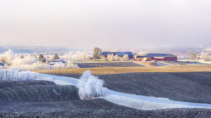 Frost auf der Landseite lizenzfreies stockbild