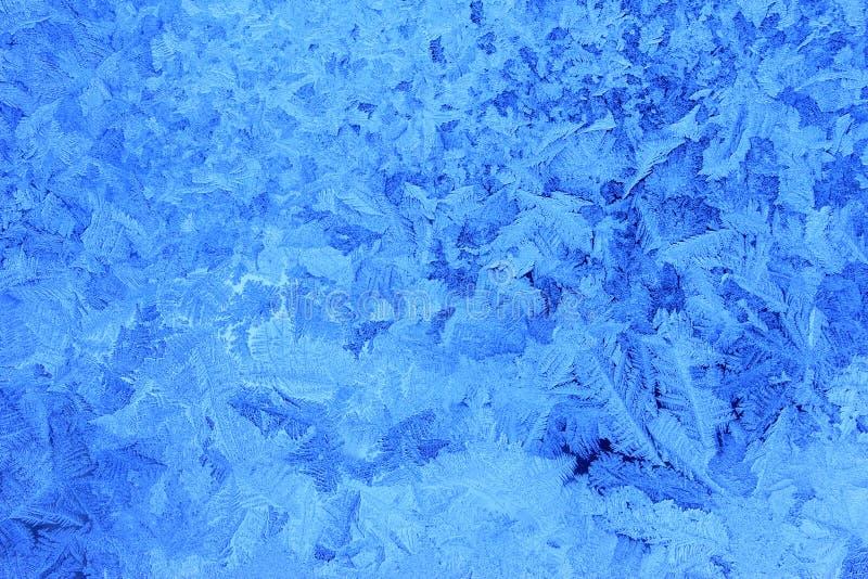 Frost-Blumen stockfotografie