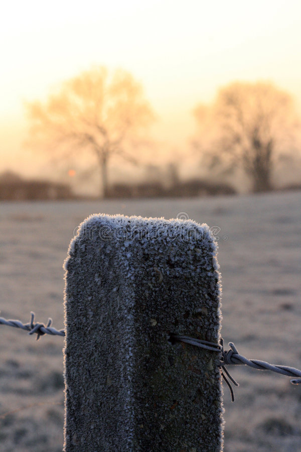 Frost covered fence post stock photo
