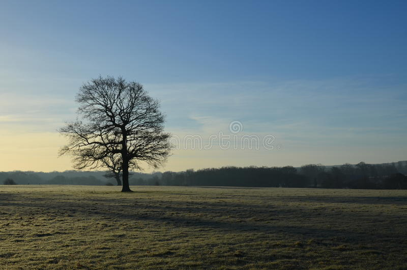 Frost covered landscape in England. royalty free stock image