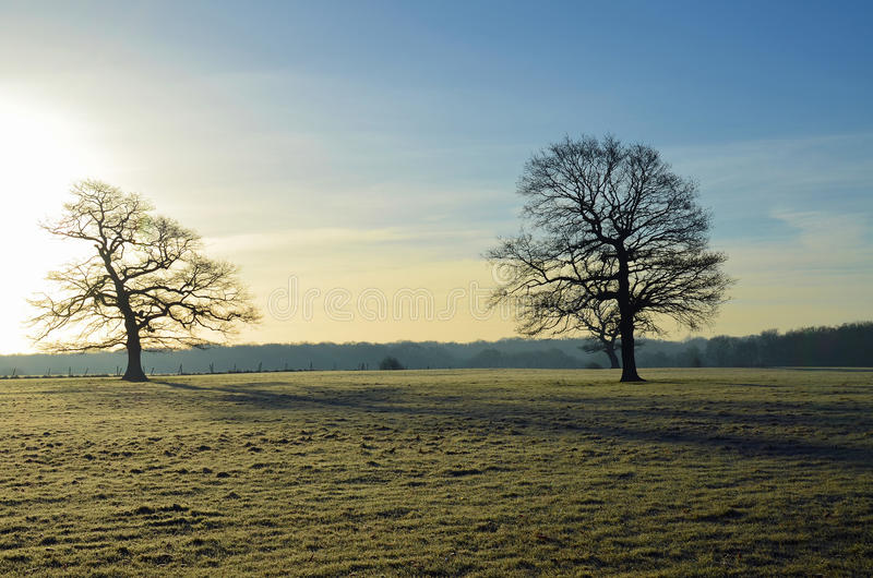Frost covered landscape in England. stock images