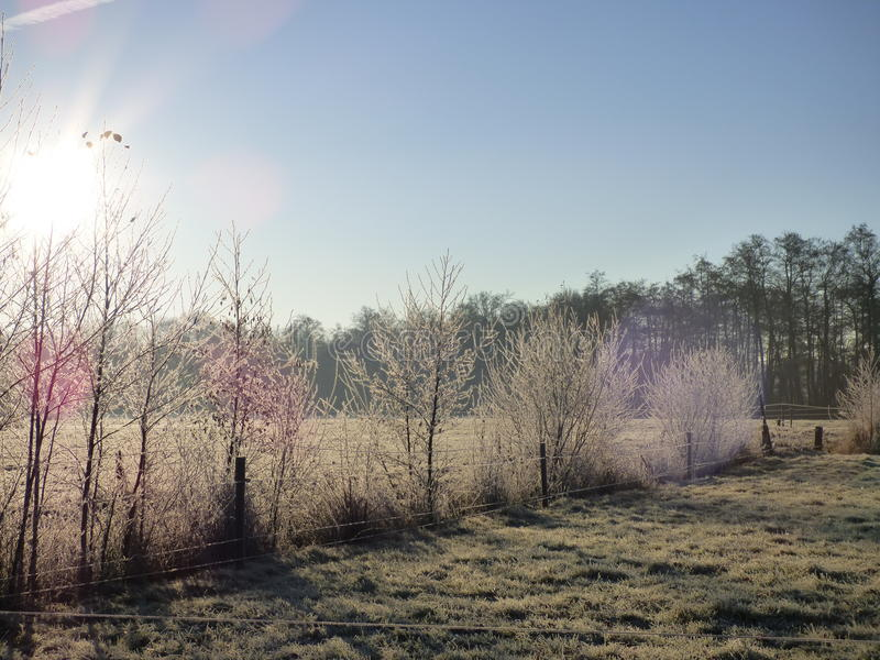 Frost dans le paysage image libre de droits