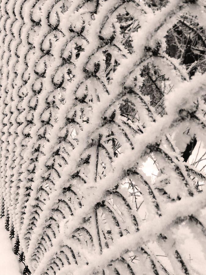 Frost dekorerar allt omkring arkivfoton