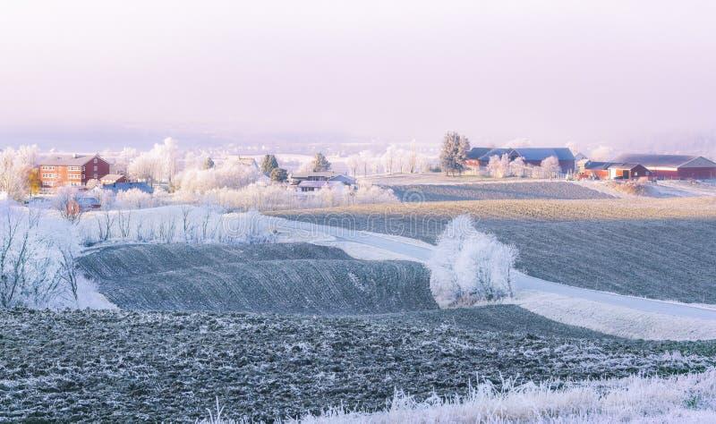 Frost do lado do país imagens de stock royalty free