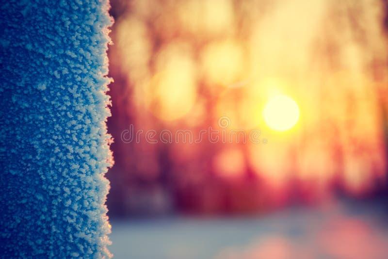 Frost en invierno abstraiga el fondo foto de archivo