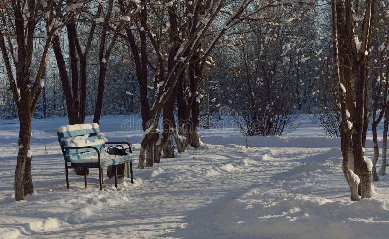 Frost et soleil - le jour est merveilleux images libres de droits
